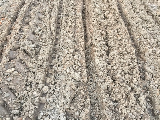 Tilled soil before drying period