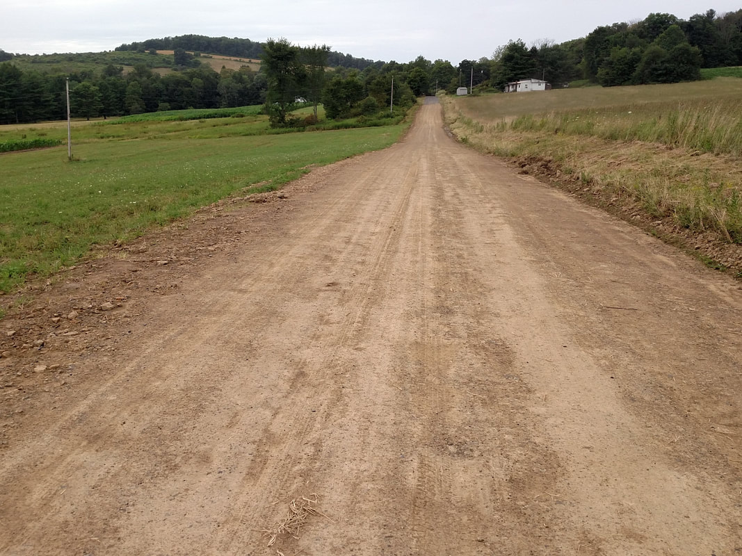 Water resistant road after TerraZyme application